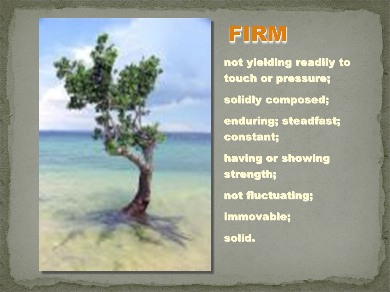 FIRM not yielding readily to touch or pressure; solidly composed;