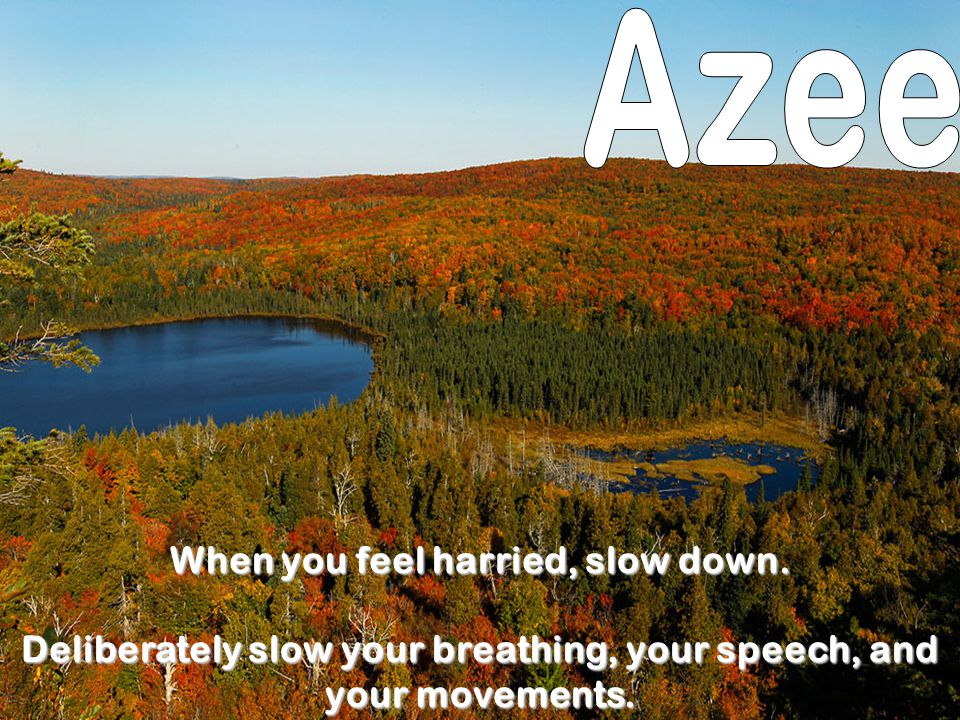 Azee When you feel harried, slow down.