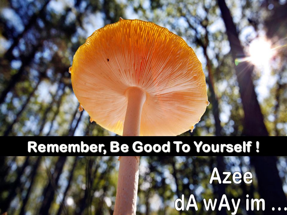 Remember, Be Good To Yourself !