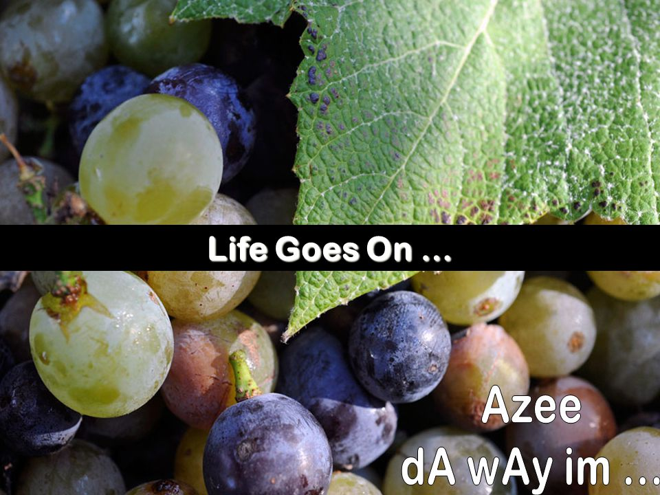 Life Goes On … Azee dA wAy im ...