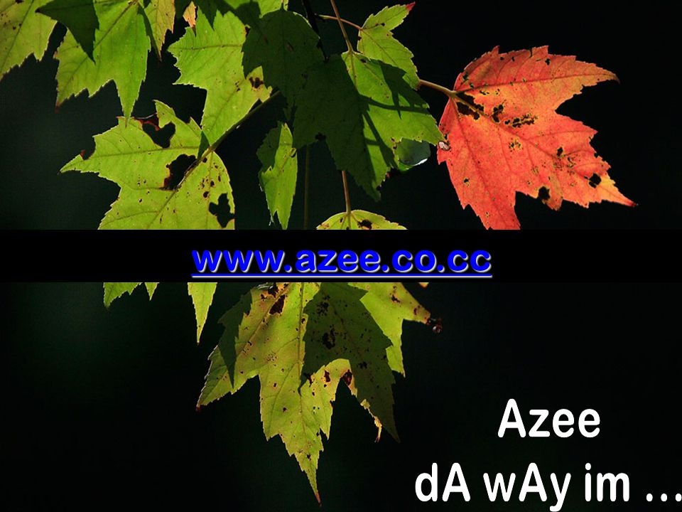www.azee.co.cc Azee dA wAy im ...