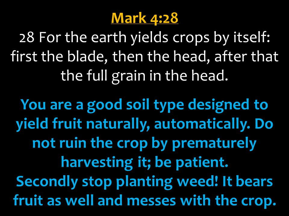 Mark 4:28 28 For the earth yields crops by itself: first the blade, then the head, after that the full grain in the head.