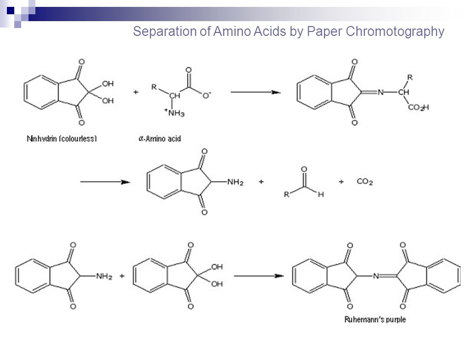 Separation of Amino Acids by Paper Chromotography