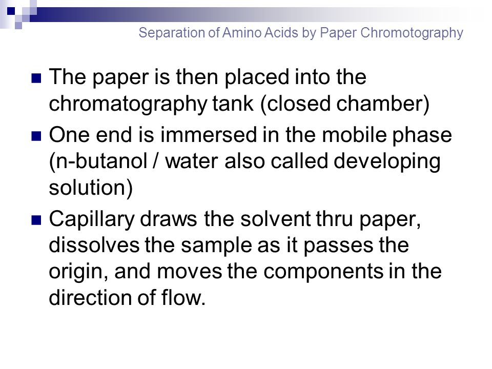 The paper is then placed into the chromatography tank (closed chamber)