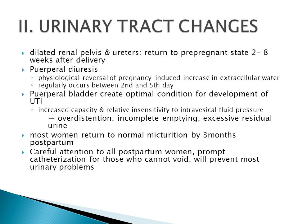 II. URINARY TRACT CHANGES