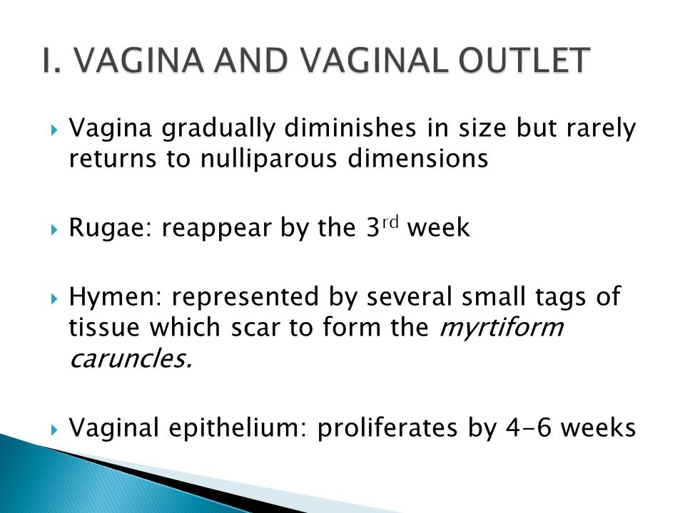 I. VAGINA AND VAGINAL OUTLET