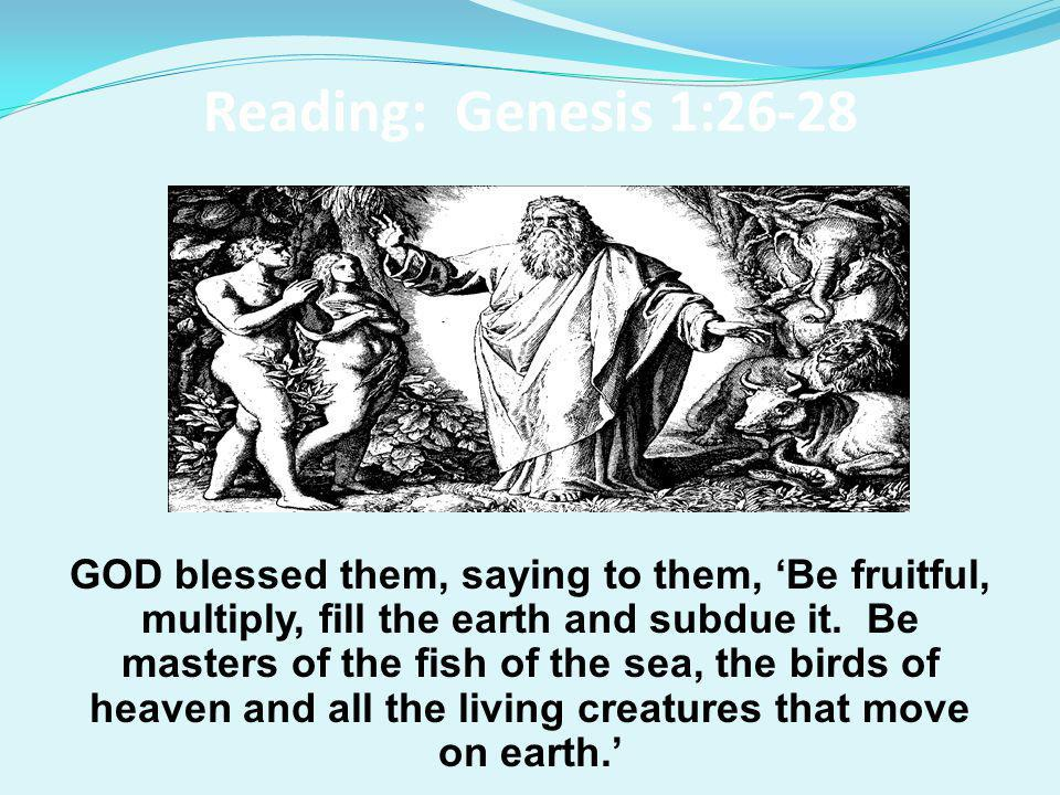 Reading: Genesis 1:26-28