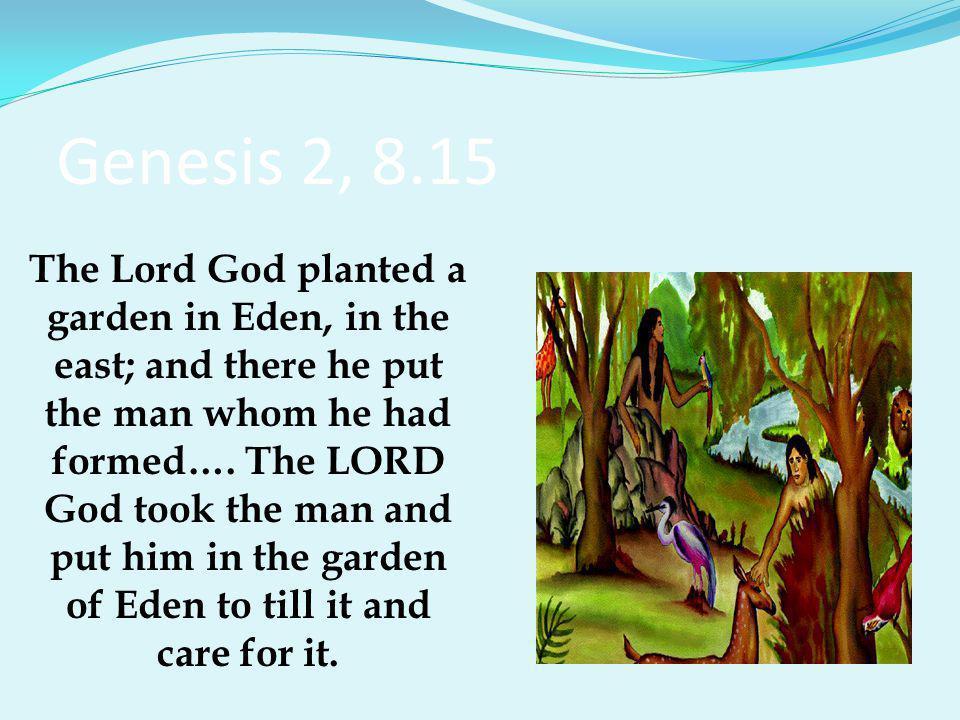 Genesis 2, 8.15