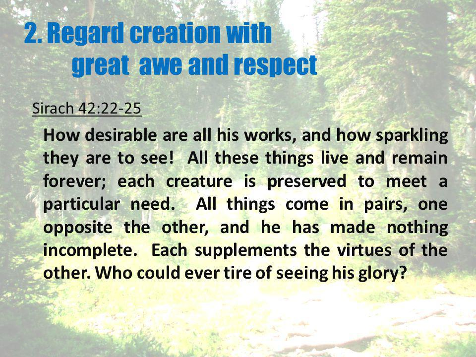 2. Regard creation with great awe and respect