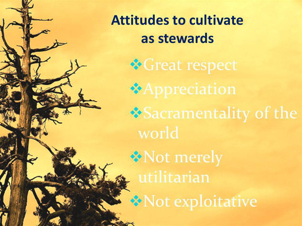 Attitudes to cultivate as stewards