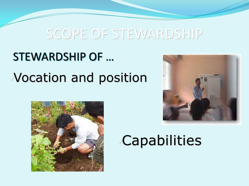 SCOPE OF STEWARDSHIP Capabilities STEWARDSHIP OF …