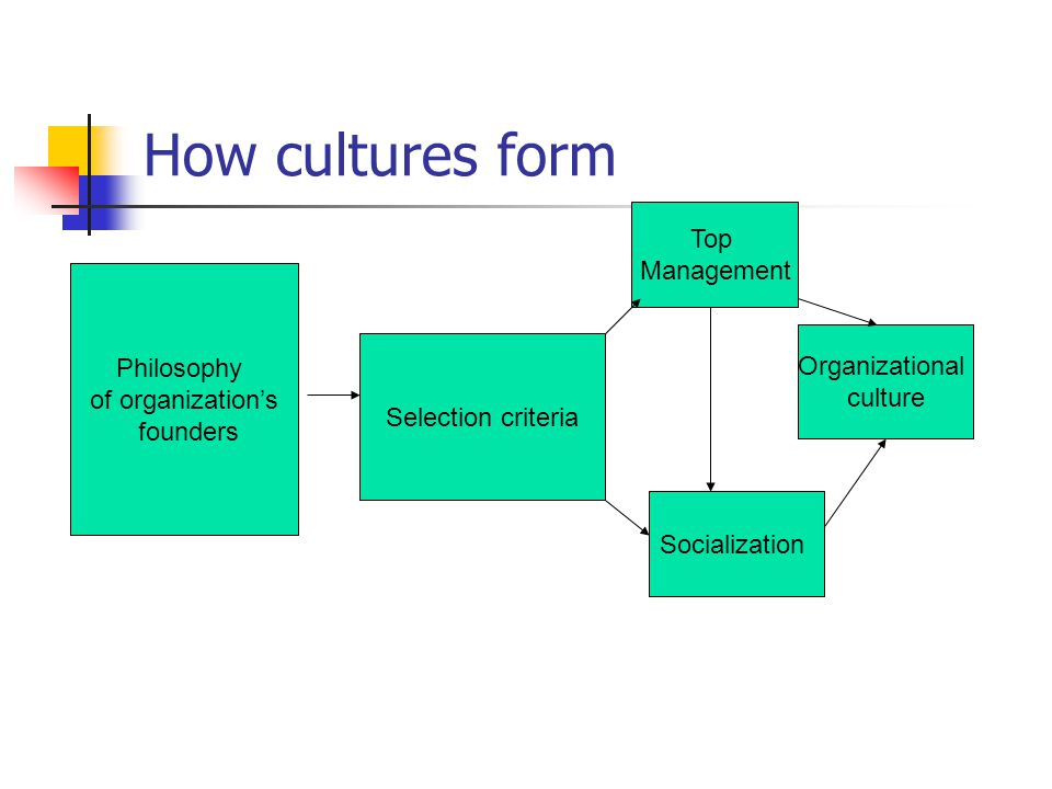How cultures form Top Management Philosophy of organization's founders