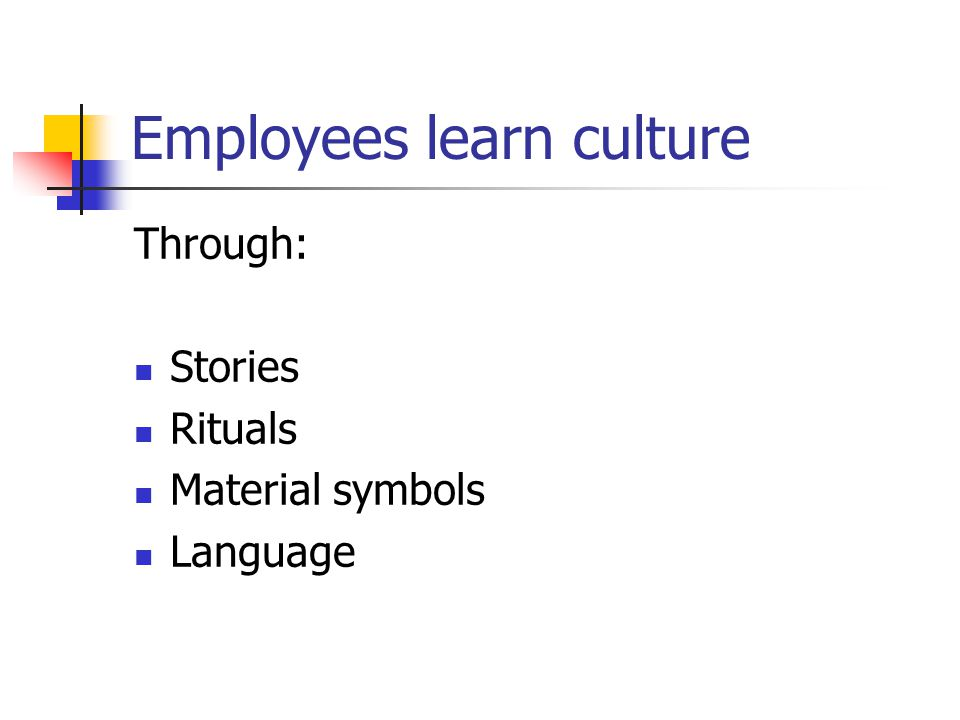 Employees learn culture