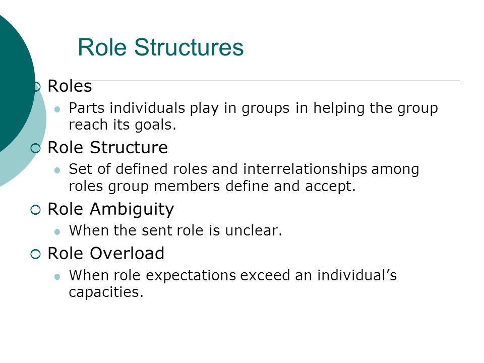 Role Structures Roles Role Structure Role Ambiguity Role Overload