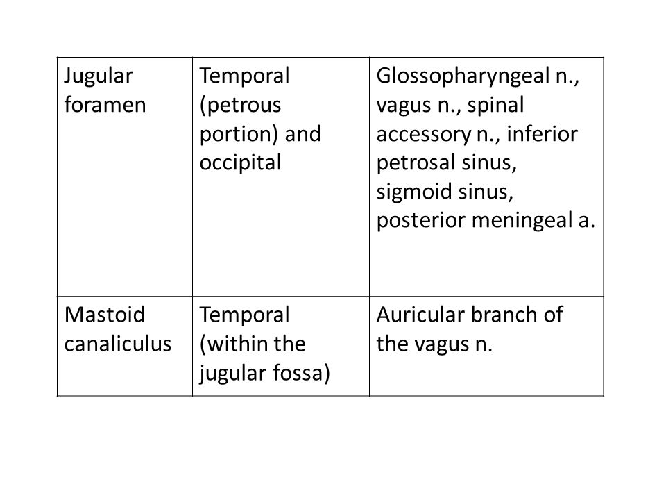 Jugular foramen Temporal (petrous portion) and occipital. Glossopharyngeal n., vagus n., spinal accessory n., inferior.