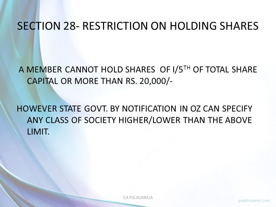 SECTION 28- RESTRICTION ON HOLDING SHARES