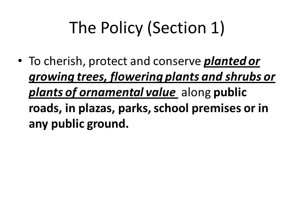 The Policy (Section 1)