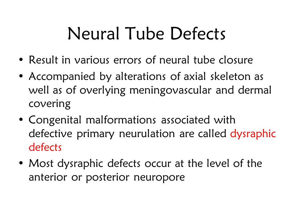 Neural Tube Defects Result in various errors of neural tube closure