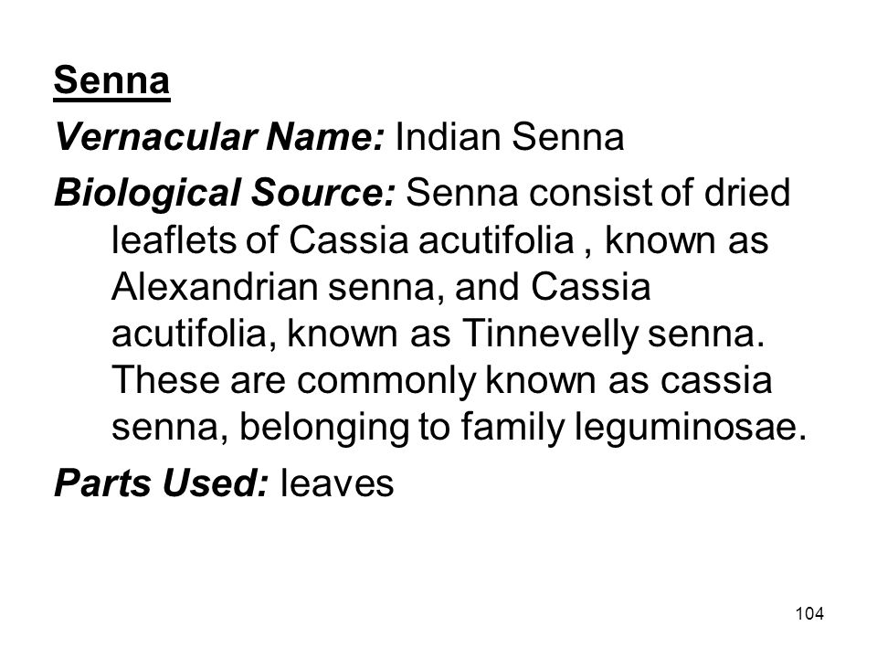 Senna Vernacular Name: Indian Senna.