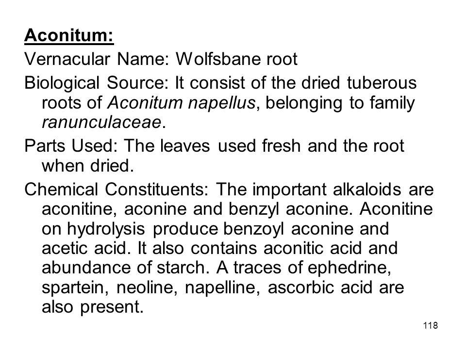 Aconitum: Vernacular Name: Wolfsbane root.