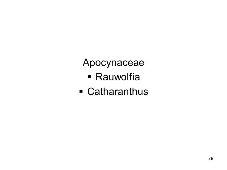 Apocynaceae Rauwolfia Catharanthus