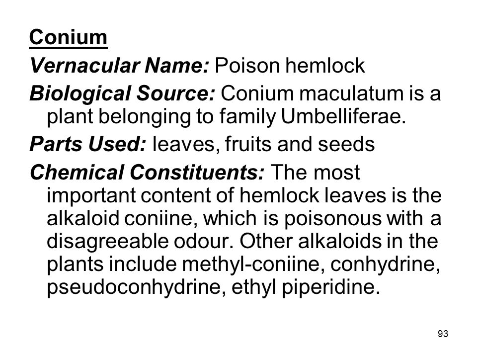 Conium Vernacular Name: Poison hemlock. Biological Source: Conium maculatum is a plant belonging to family Umbelliferae.