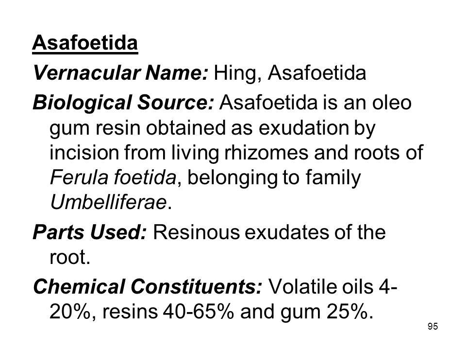 Asafoetida Vernacular Name: Hing, Asafoetida.
