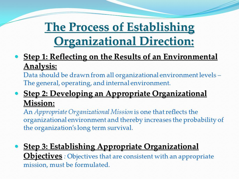 The Process of Establishing Organizational Direction: