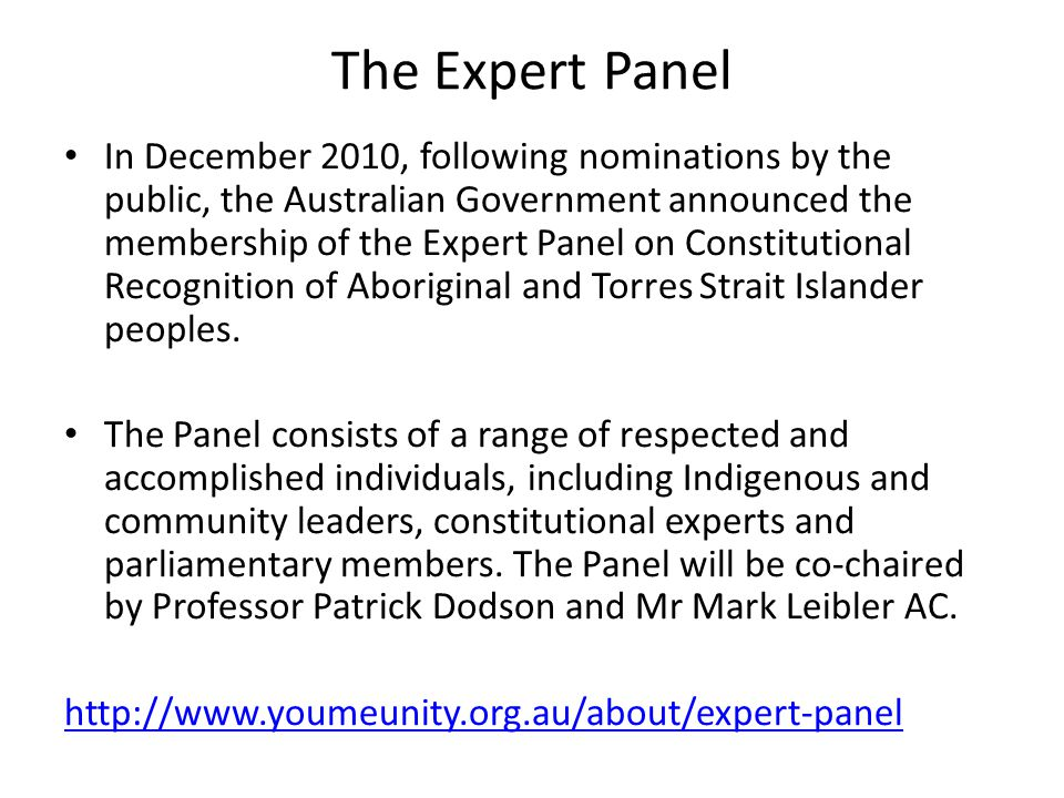 The Expert Panel