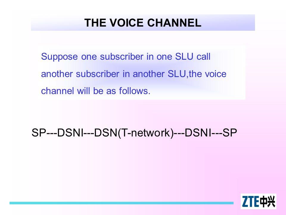 SP---DSNI---DSN(T-network)---DSNI---SP