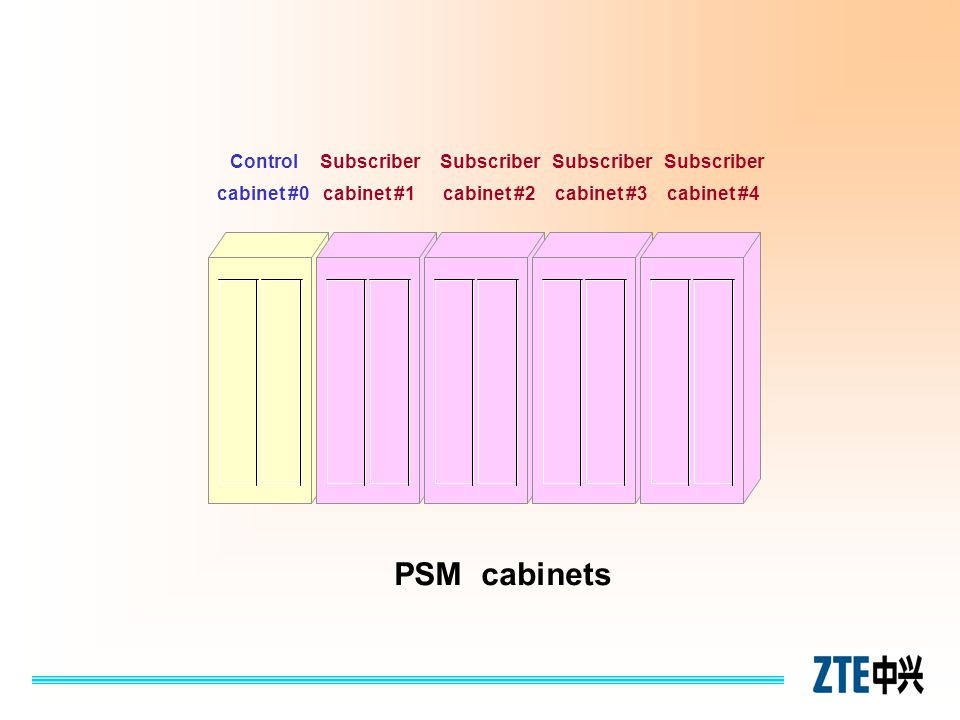 PSM cabinets Control cabinet #0 Subscriber cabinet #1