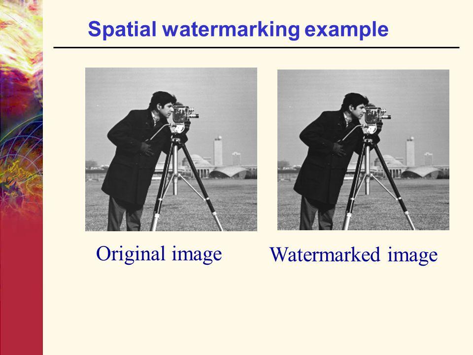 Spatial watermarking example