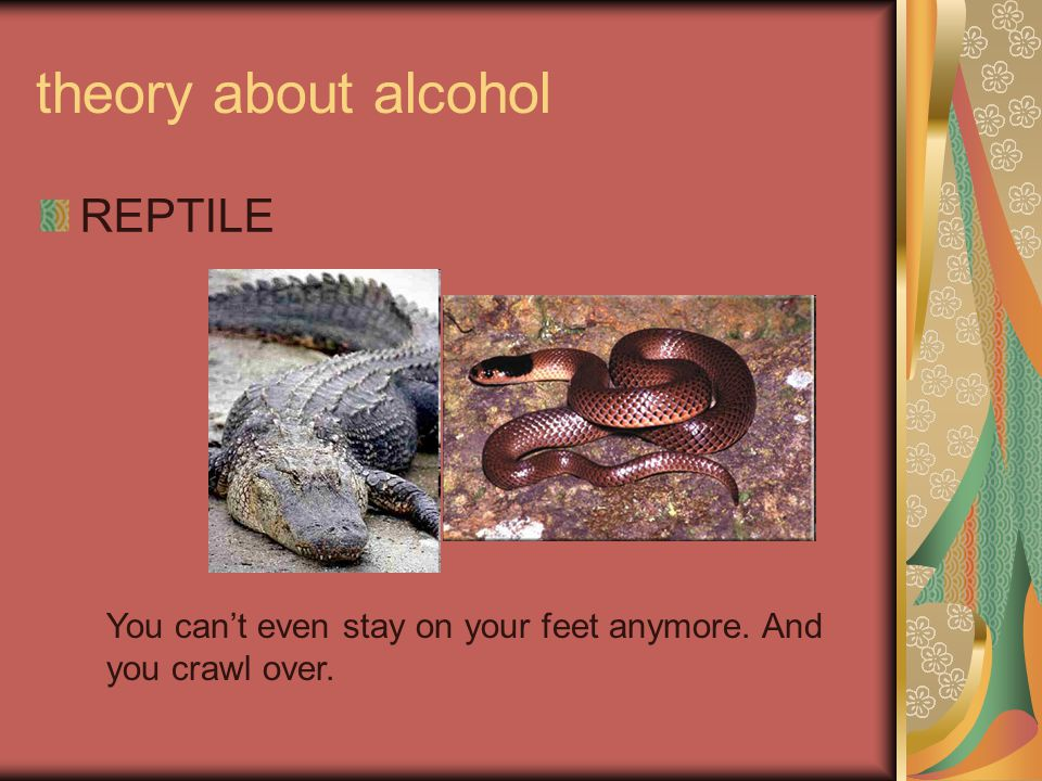 theory about alcohol REPTILE