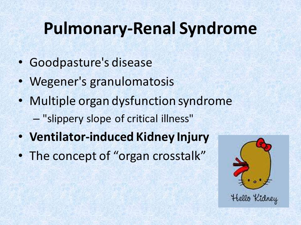 Pulmonary-Renal Syndrome