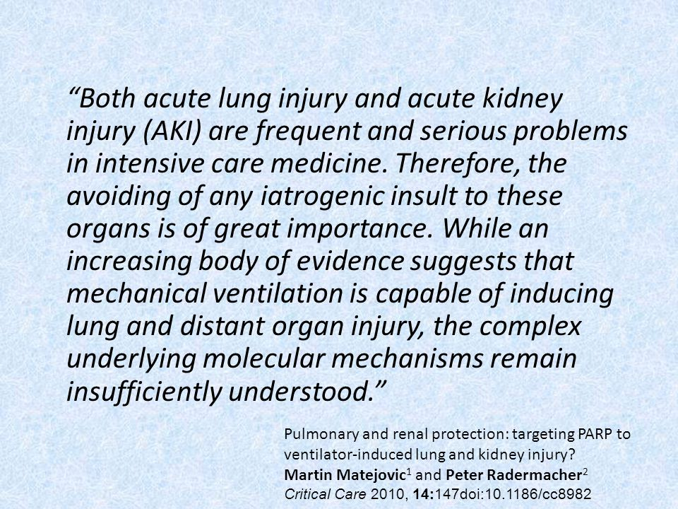Both acute lung injury and acute kidney injury (AKI) are frequent and serious problems in intensive care medicine. Therefore, the avoiding of any iatrogenic insult to these organs is of great importance. While an increasing body of evidence suggests that mechanical ventilation is capable of inducing lung and distant organ injury, the complex underlying molecular mechanisms remain insufficiently understood.