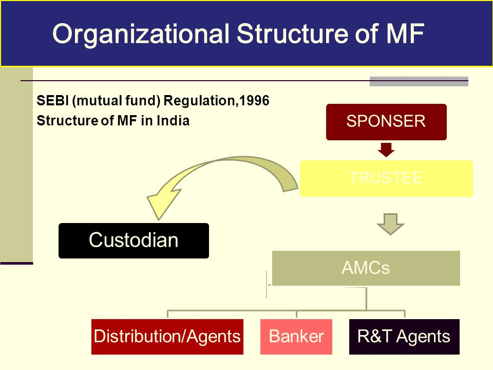 Organizational Structure of MF