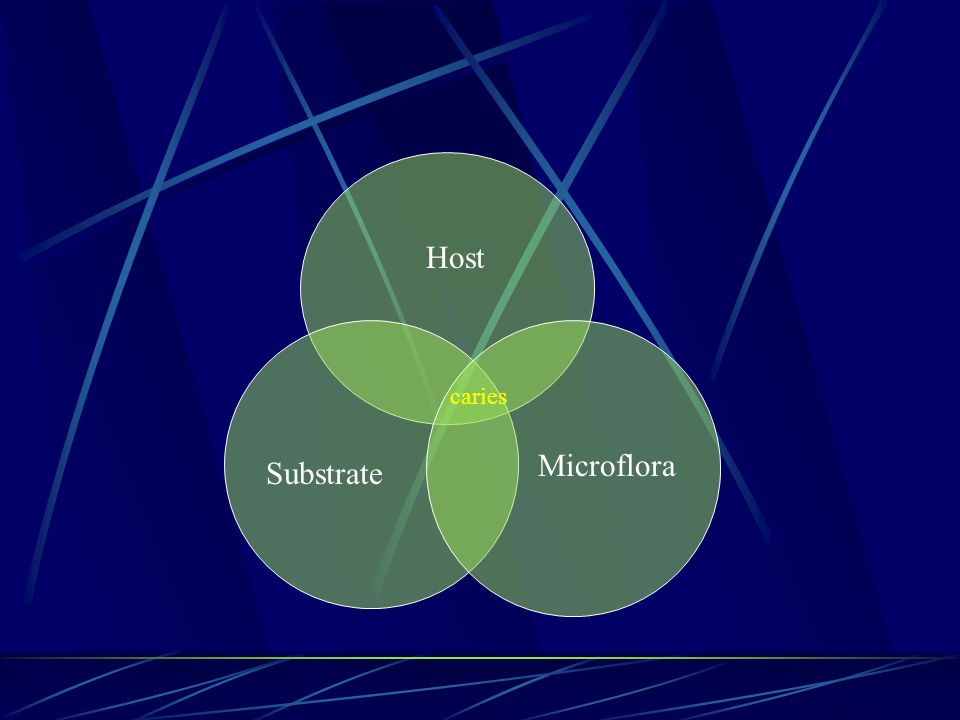 Host caries Microflora Substrate