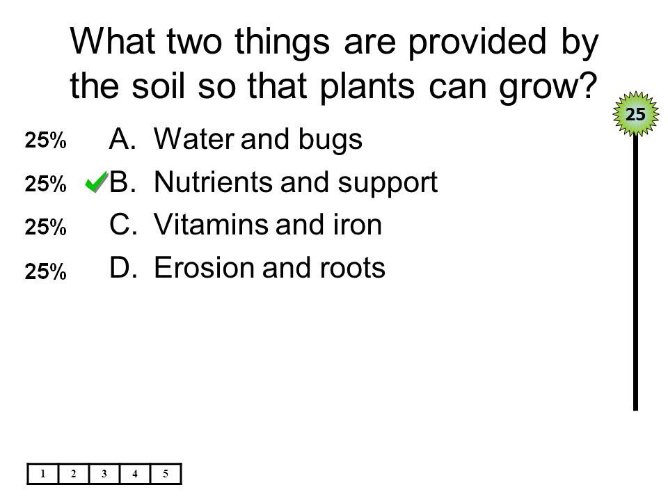 What two things are provided by the soil so that plants can grow