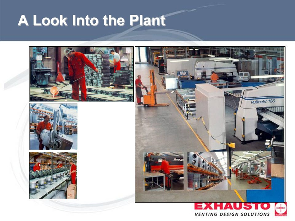 A Look Into the Plant