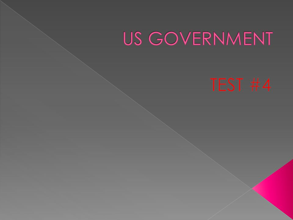 US GOVERNMENT TEST #4