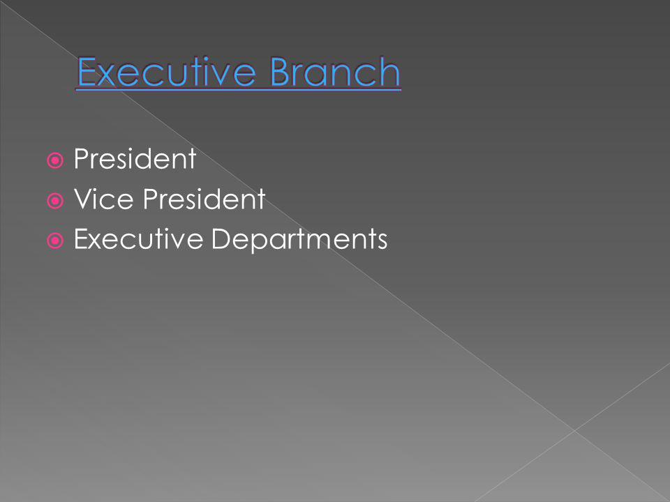 Executive Branch President Vice President Executive Departments