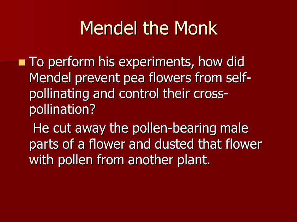 Mendel the Monk To perform his experiments, how did Mendel prevent pea flowers from self-pollinating and control their cross-pollination