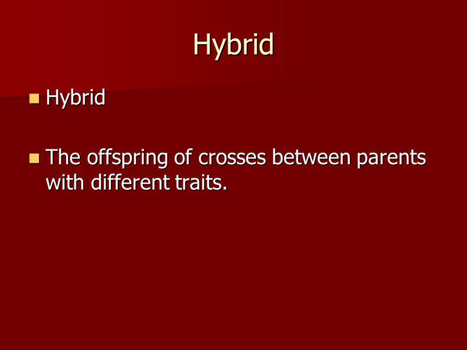Hybrid Hybrid The offspring of crosses between parents with different traits.