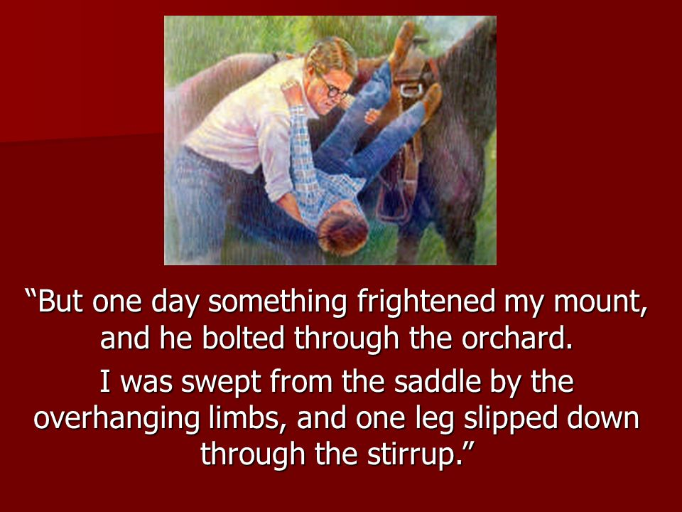 But one day something frightened my mount, and he bolted through the orchard.