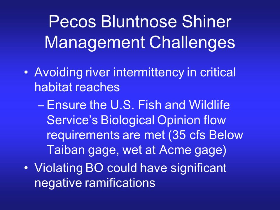 Pecos Bluntnose Shiner Management Challenges