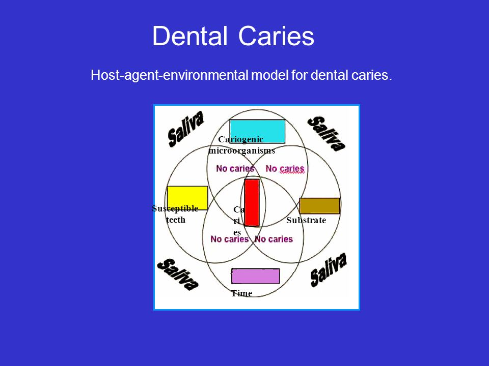 Dental Caries Host-agent-environmental model for dental caries.