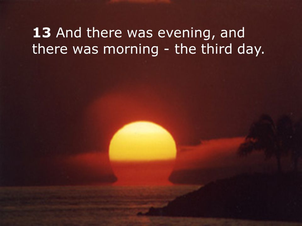 13 And there was evening, and there was morning - the third day.