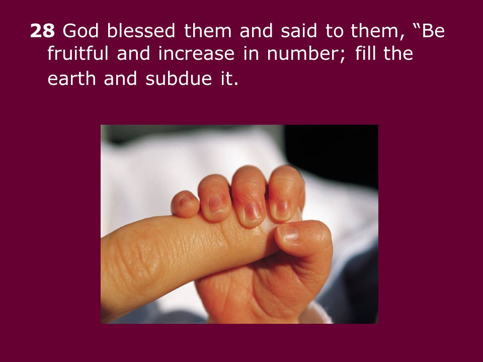 28 God blessed them and said to them, Be fruitful and increase in number; fill the earth and subdue it.