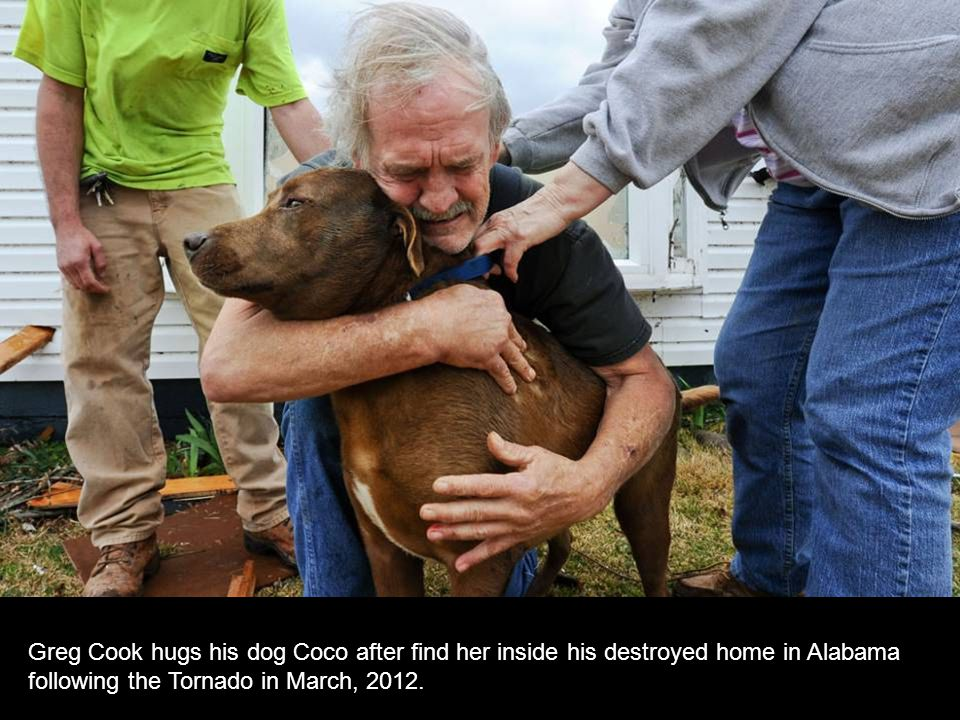 Greg Cook hugs his dog Coco after find her inside his destroyed home in Alabama following the Tornado in March, 2012.