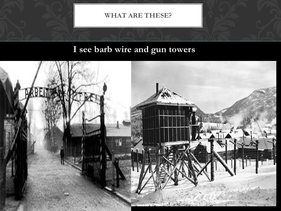 I see barb wire and gun towers